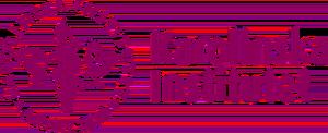 Karolinska Institutet logo