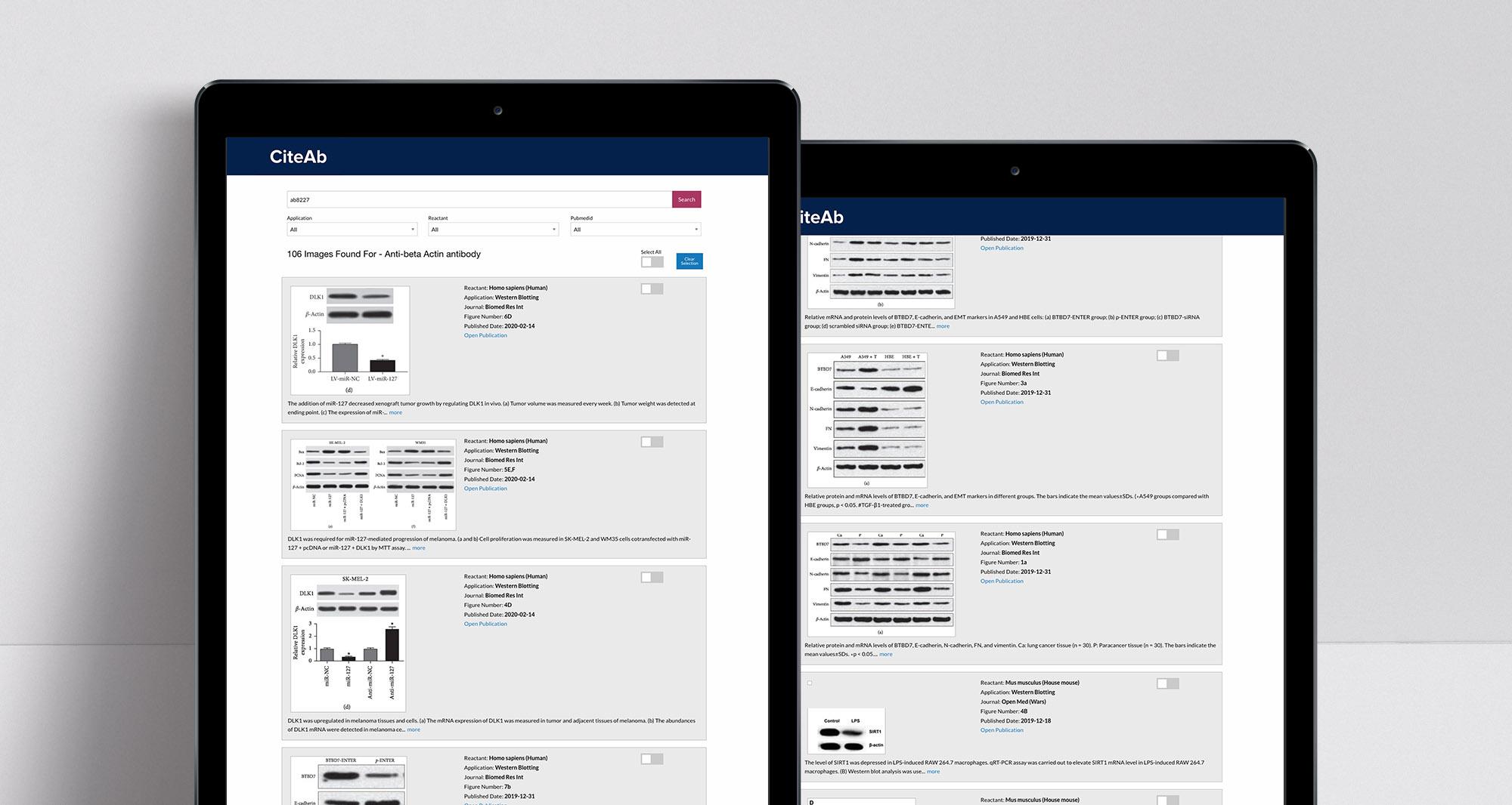 API示例屏幕